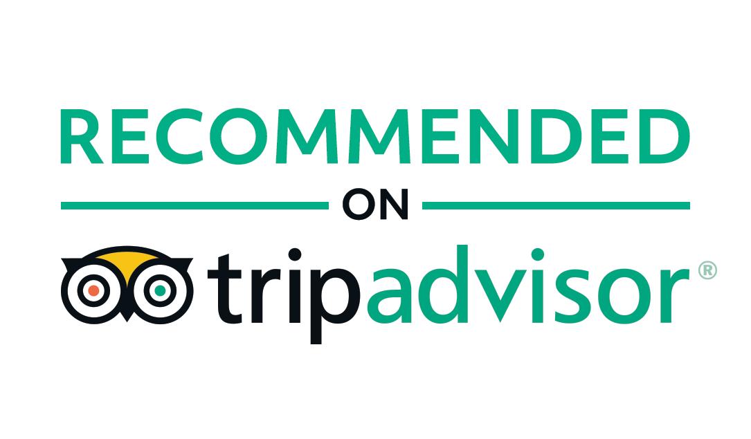 tripadvisor, Hotel Ionion, Killini Ilias